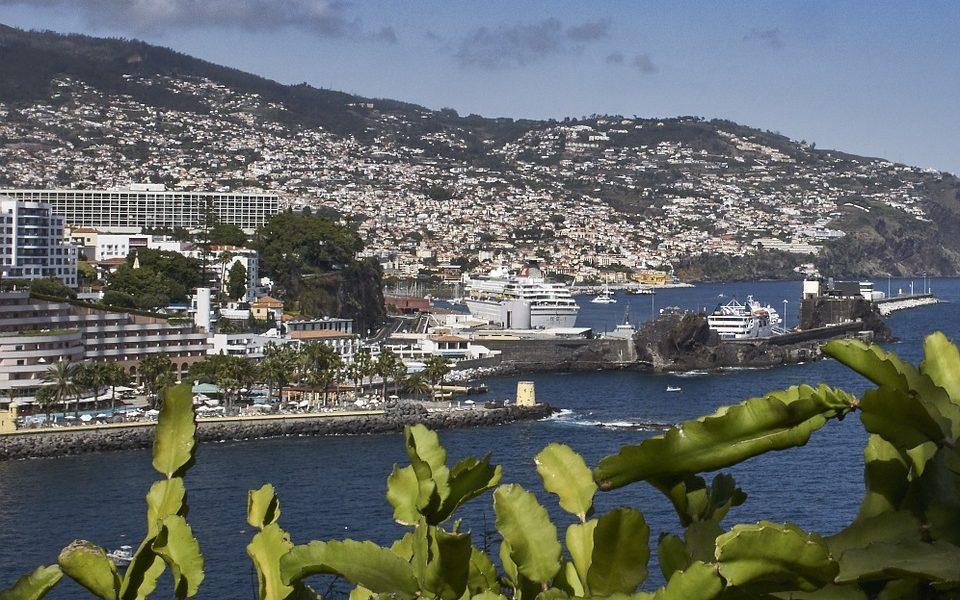 EAD espera crescer de 80% na Madeira em 2021
