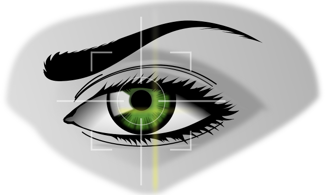 Vision-Box implementa controlos biométricos na Austrália