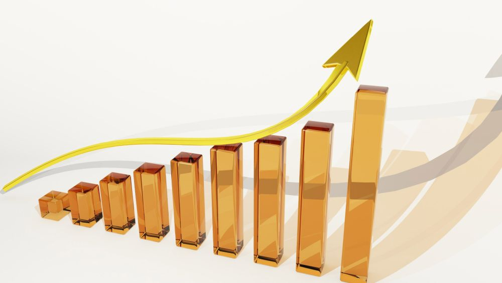 Bizdirect Crescimento