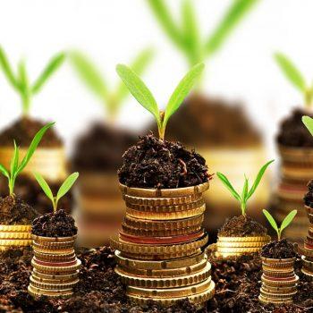 Programa Schneider Electric Ventures vai apoiar inovação e investir em startups