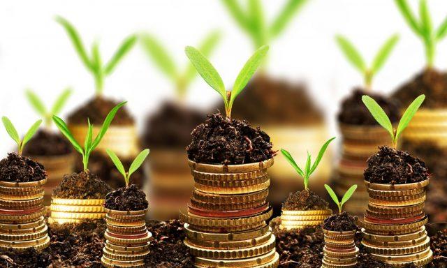 Novo Banco tem 40 milhões de euros para ajudar empresas a modernizar