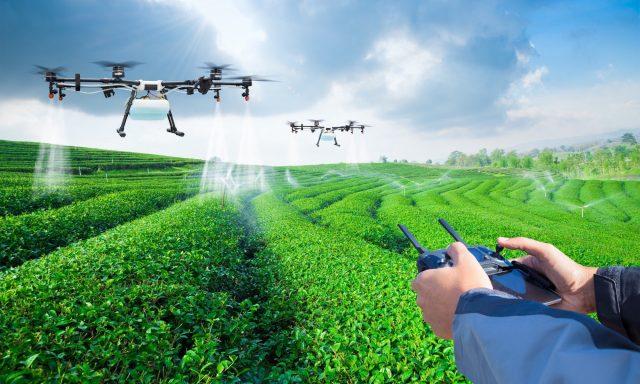 ISQ trabalha para um agricultura mais inteligente